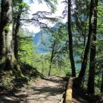 Wege und Ausichten am Königssee